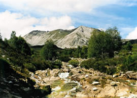 Beinn Eighe          Copyright:  Tom Forrest